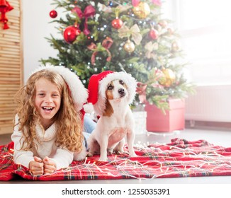 Child with dog near christmas tree