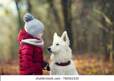 child and dog together in autumn park