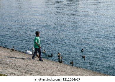 Child with ducks