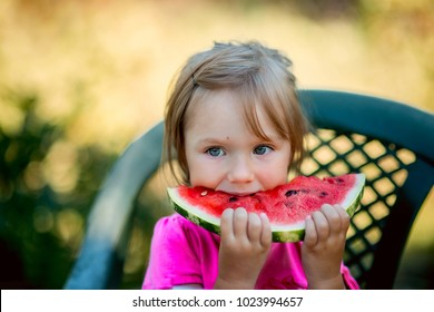 Child eating watermelon in the garden. Kids eat fruit outdoors.