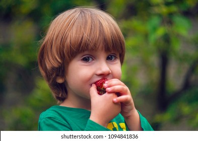 The child eats a ripe sweet strawberry. Child on grass background eating strawberries