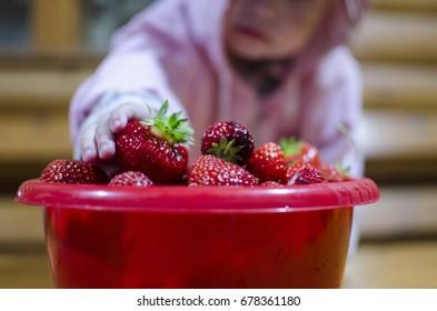 child eats strawberries