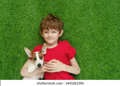 Child embracing puppy jack russell and lying on green carpet. High top view.