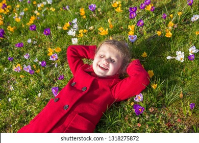 Child enjoys spring, sun and flowers. Smiling kid is lying on the green grass on the lawn among the spring flowers crocuses and has fun. Spring sunny day, first flowers and happy children.