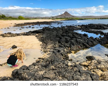 Child Exploring Tidal Pools in the Galapagos Islands
