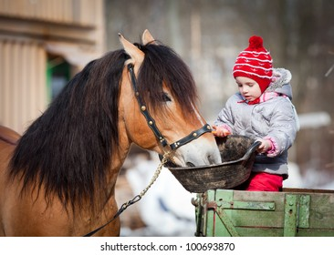 Child feeding a horse, sitting on a cart in the winter.