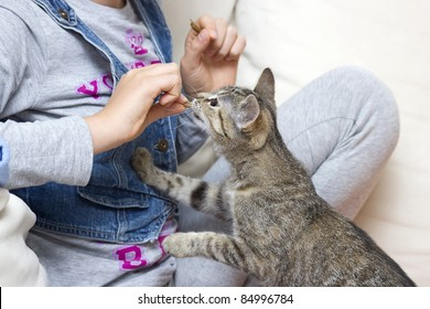 A child feeding kitten
