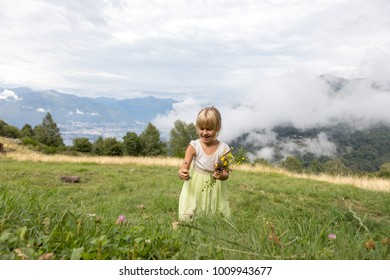 child in the garden picking flowers