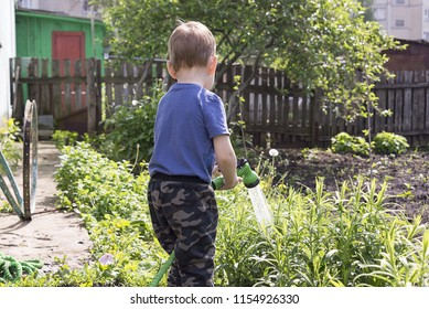 a child in the garden watering flowers, a little boy with a water hose watering the garden