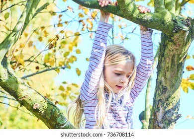Child Girl is climbing on tree. Active leisure of skillful female child outdoors.