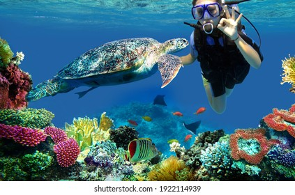 child girl diver and turtle underwater