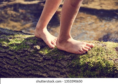 Child girl feet walking on tree trunk. Selective focus