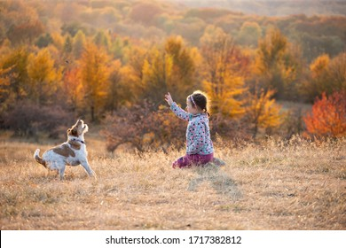 Child girl fun and plays with her dog during walk in autumn forest.