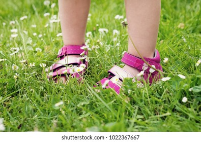Child girl in pink sandals in green grass with daises, detail of feet, spring concept.
