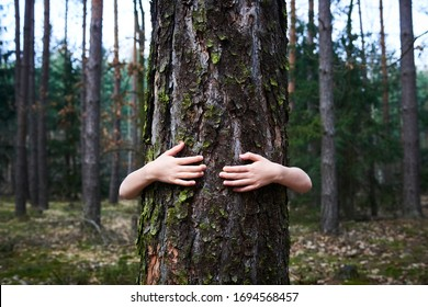 Child girl stand behind and give hug to tree in forest. Concept of global problem of carbon dioxide and global warming. Love of nature