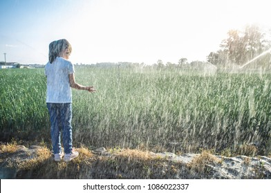 Child girl under sprinklers at work with backlit sunrays at onions field. Guadiana meadows, Badajoz, Spain