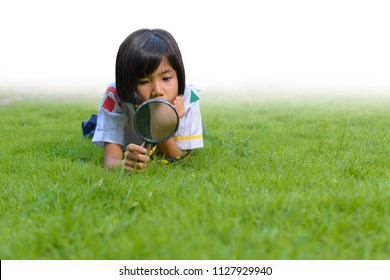 Child girl used magnifying glass to fine tiny insect on grass field. Concept of Learn Beyond Classroom.