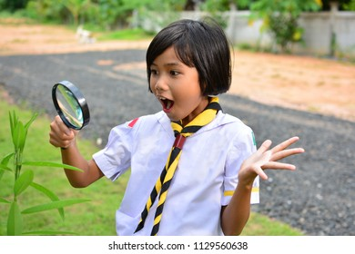 Child girl used magnifying glass to fine tiny insect on plant. Concept of Learn Beyond Classroom.
