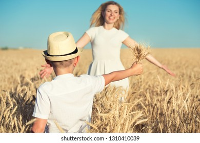 The child gives to mother bouquet of spikelets in a wheat field.