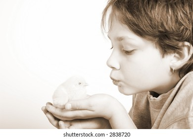 child going to kiss the little Easter chick