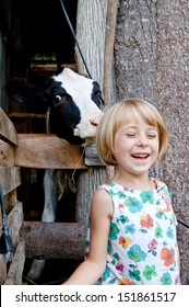 A child grins in delight as a cow licks the back of her head.