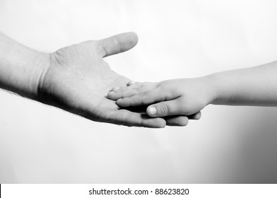 child hand hold by the adult hand