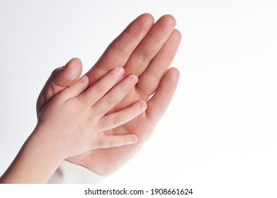 Child hand in parent palm lay on top isolated studio background