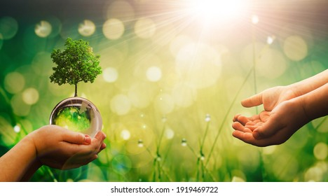 Child hands holding crystal earth globe and growing tree.  Earth Day banner with  copy space. Environment, save clean planet, ecology concept.