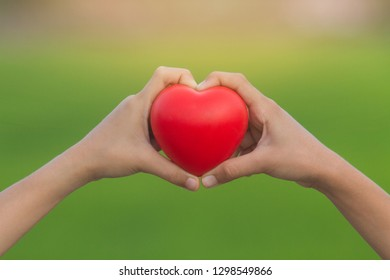 Child hands holding red heart on nature background, health care, donate and family insurance concept, world heart day, world health day, CSR concept. Soft focus image.