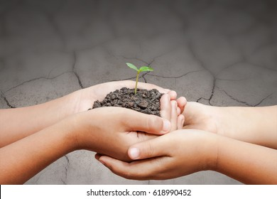child hands holding soil with sprout on cracked ground, save the world and  protect nature concept