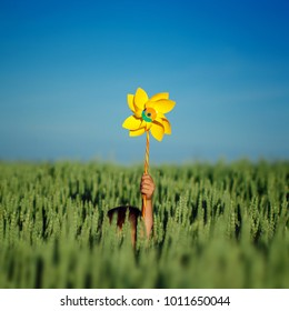 Child hands holding  yellow  pinwheel on green field and blue sky background in summer day