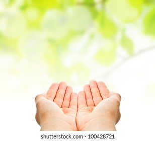 child hands ready to catch or to hold something over green natural background