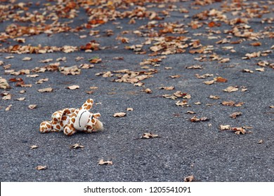A child has lost a toy on the road. Accident with a child on the road