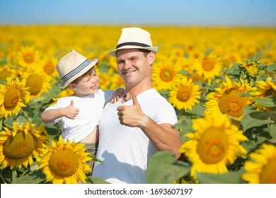 A child and his dad are playing in a huge field of sunflowers. Little boy and man in white t-shirts and hats. Dad holds the baby in his arms