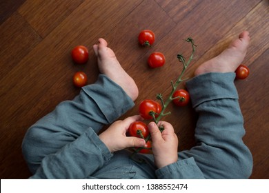 A child holding cherry tomatoes in his hands. A little baby exploring food and vegetables.