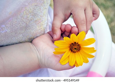 Child holding flowers in a hand