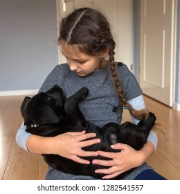 The child is holding a Labrador puppy. The girl takes care of a little puppy. Love for animals concept. Pet and child.