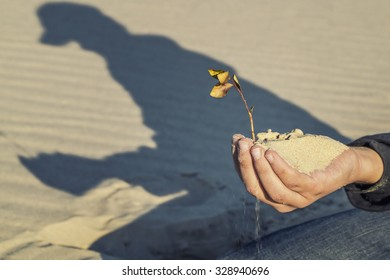 child holding a plant in his hand in sand