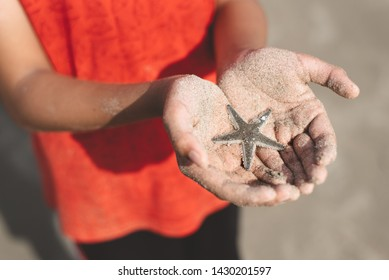child holding or showing a starfish in a cupped hand with beach sand. concept of marine and aquatic life