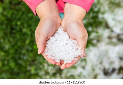 Child is holding small icy cold freezing grains of hail in bare hands, outdoors in autumn day. Seasonal weather concept.