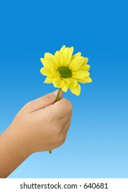 Child holding an yellow daisy