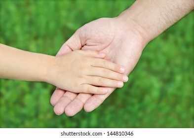 Child holds the hand of the father outdoor