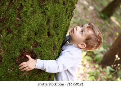 Child hugging big tree in the forest