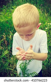 Child kid examining and picking flowers in meadow. Environmental awareness education. Green summer nature.