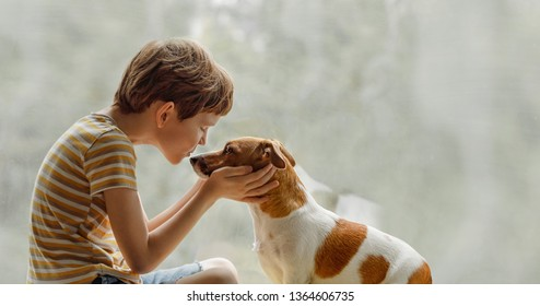 Child kisses the dog in nose on the window. Friendship, care, happy childhood concept.