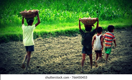 Child Labour Images, Stock Photos & Vectors | Shutterstock
