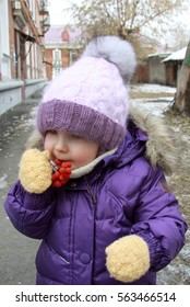 Child in lilac winter clothes eating rowan berries