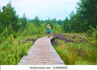 Child little blond girl exploring nature at Soumarske moor (peat-bog), National Park Sumava, Bohemian forest, Czech Republic