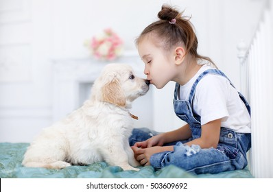 child with little dogs playing at home. girl with puppies. child with puppy. kissing, hugging, playing in room