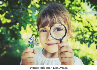The child is looking in a magnifying glass. Increase. selective focus. nature.
